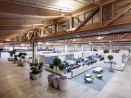 Unter einem sieben Meter hohen Sheddach erstrecken sich hochmoderne Working Spaces mit echten Bäumen großzügig bepflanzt.<br><span class='image_copyright'>ATP/Pierer</span><br>